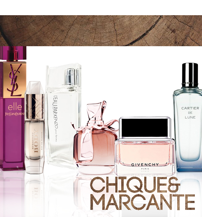 Perfumes Femininos de inverno Chiques e Marcantes