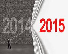 Como foi o seu ano de 2014?