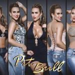 Calça-Pit-Bull-–-Como-Usar-03