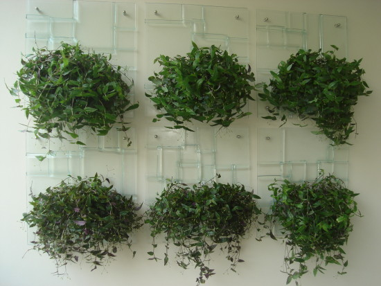 fazer jardim vertical garrafa pet:lindo jardim vertical para ajudar na escolha do modelo do seu jardim