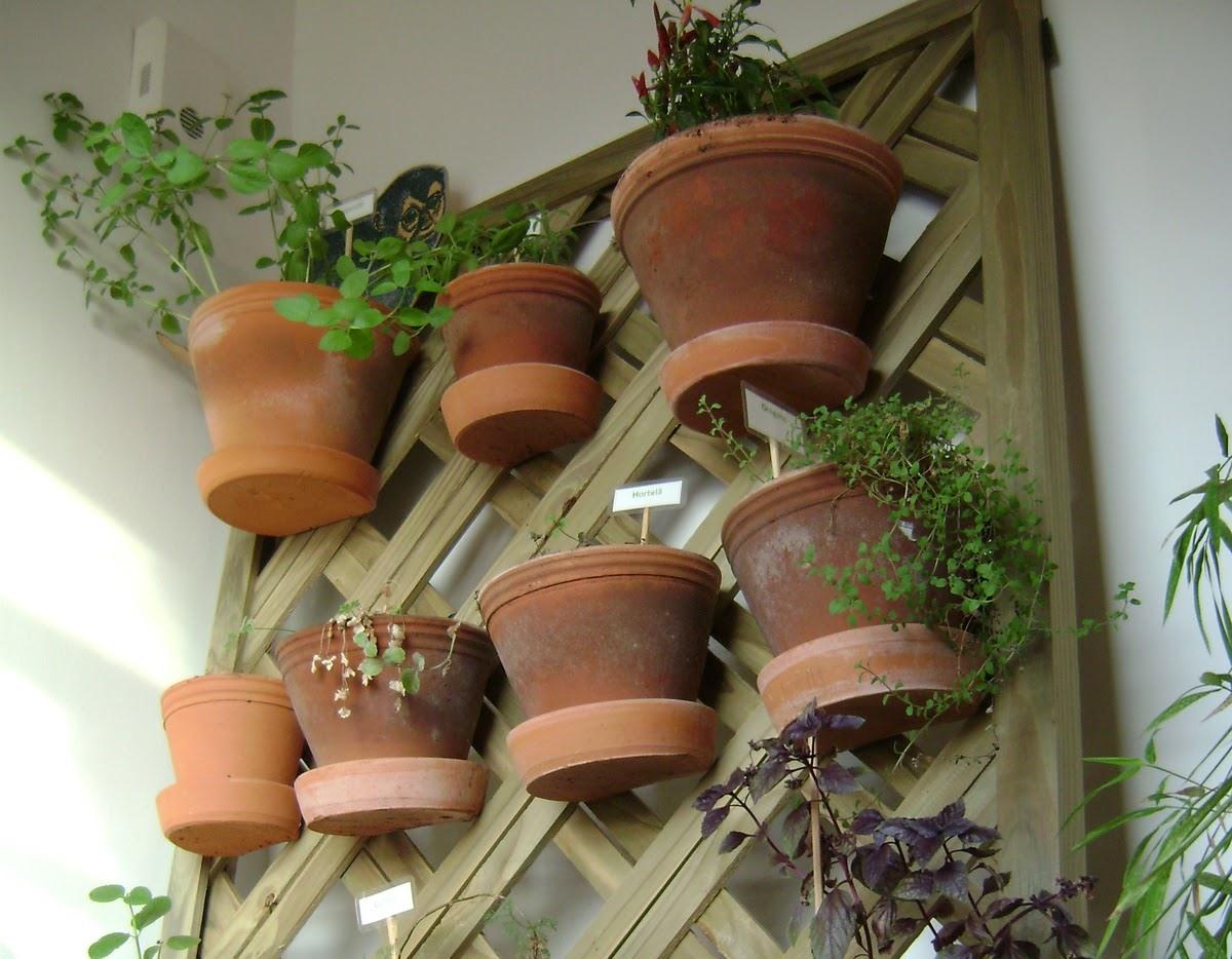 Dicas para montar um jardim vertical