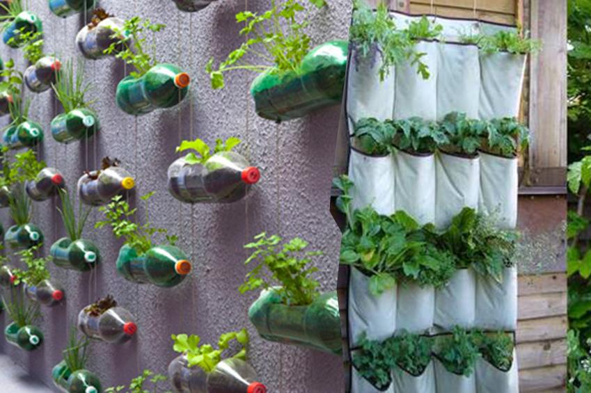 plantas para jardim vertical de garrafa pet:Dicas-Para-Montar-Um-Jardim-Vertical-Em-Um-Espaço-Pequeno-18