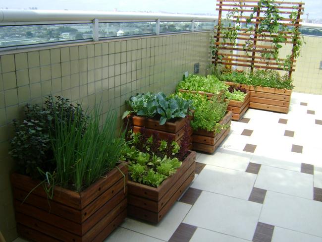 Horta-Em-Casa-Saiba-Como-Cultivar-03