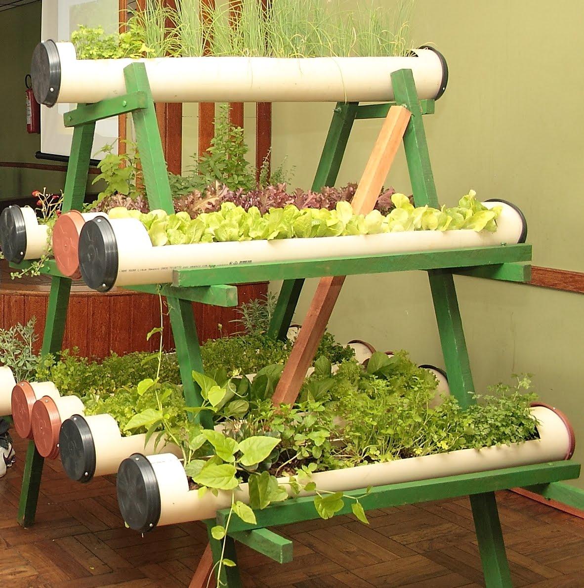 Diy Pvc Gardening Ideas And Projects: Horta Em Casa Saiba Como Cultivar