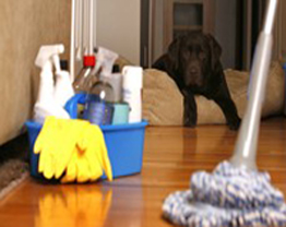 Como limpar a sua casa em 5 passos