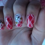 Unhas-Decoradas-do-Face-Book-10