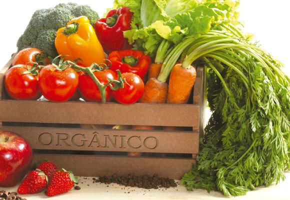 Alimentos-orgânicos-e-seus-benefícios-02