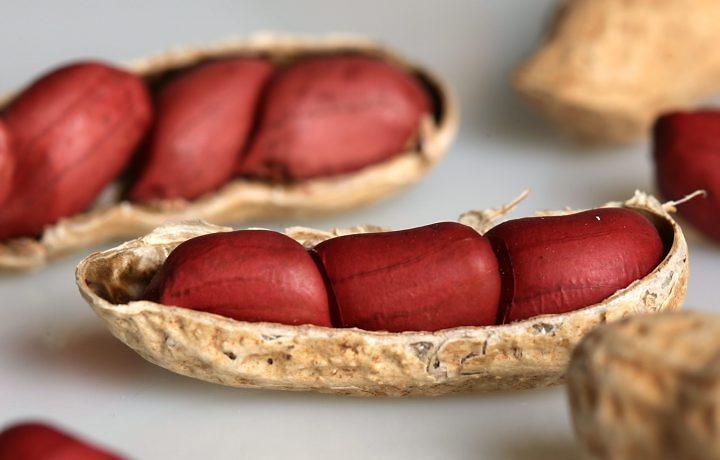Amendoim-contra-as-gordurinhas-02