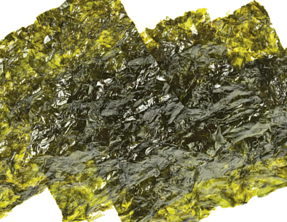 Conheça-os-benefícios-das-algas-para-a-saúde-01
