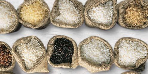 Conheça-os-diferentes-tipos-de-arroz-e-suas-propriedades-01
