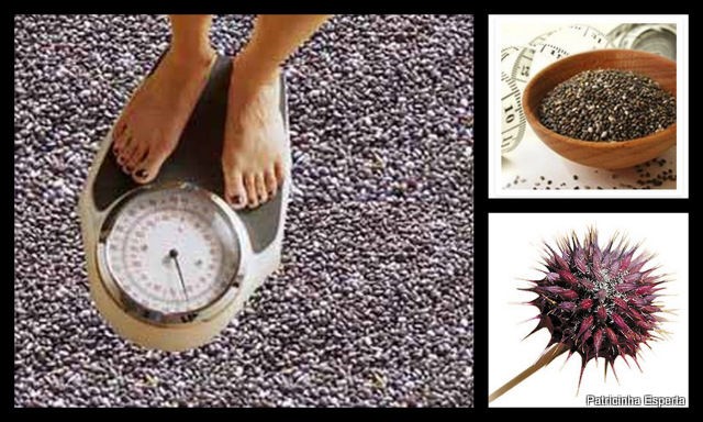 Semente-de-Chia-Benefícios-–-Como-consumir-semente-de-chia-02