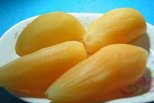 Yacon: nutrição e efeitos metabólicos
