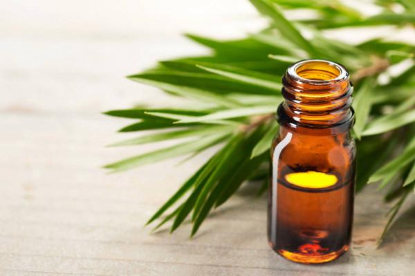 Oleo de melaleuca para o corpo