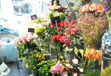 Significado das flores em um ramo